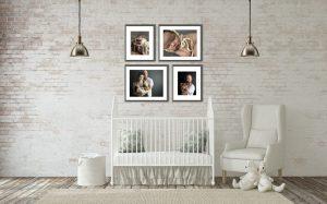 Denver Newborn Photographer Room View