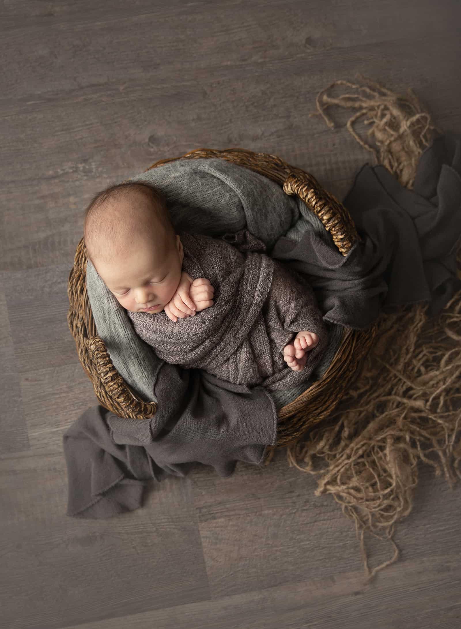 Colorado Baby Photographer